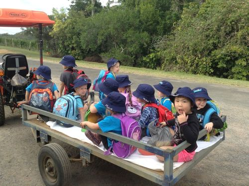 Farm Suncoast Little Learners