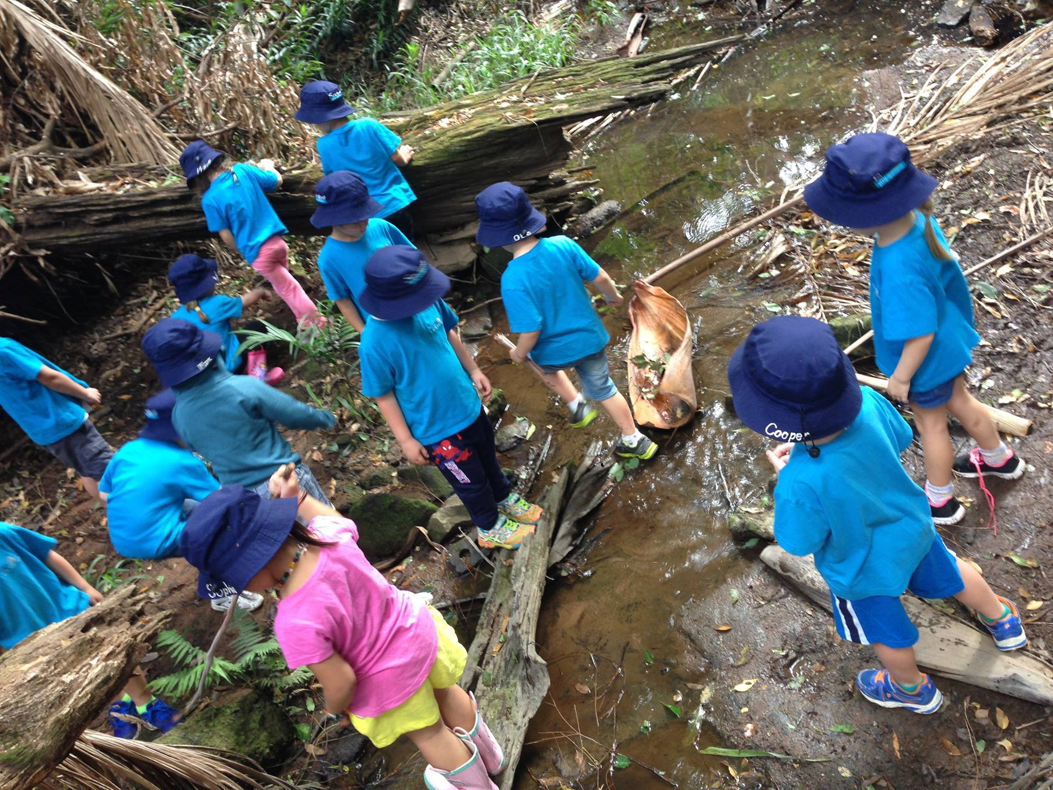 Kindy students exploring the creek at Bush Kindy at Suncoasst Little Learners